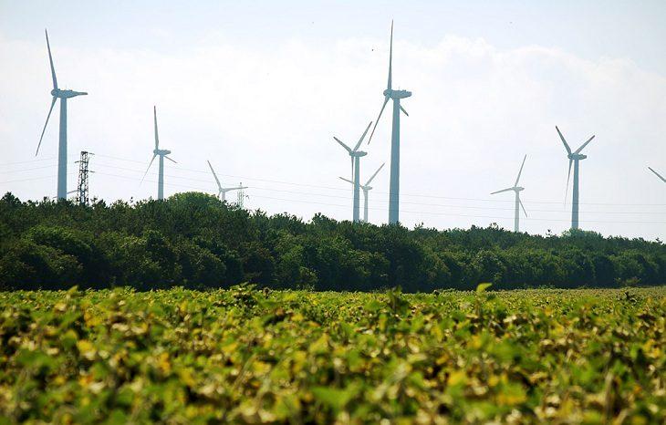 Страны «Большой двадцатки» направили триллионы долларов на «озеленение» экономики