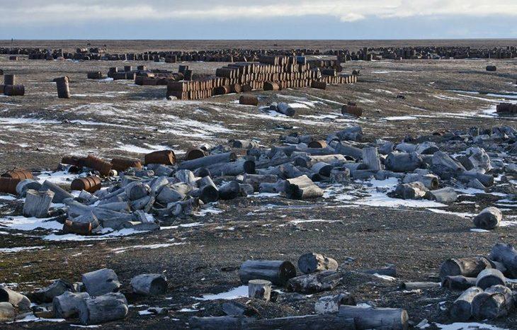 Пластиковый мусор угрожает экосистеме Арктики