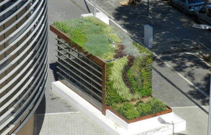 Эко-крыша – как залог комфортной температуры в городе
