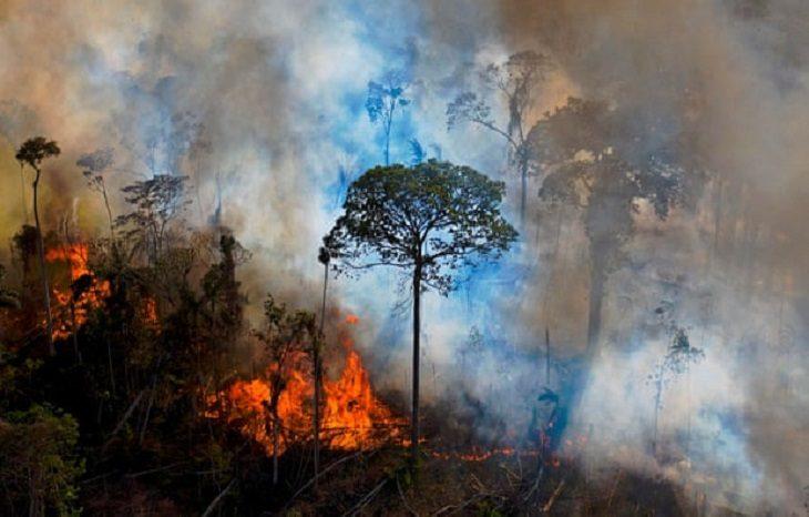 Загрязнителей экосистемы привлекут к международной уголовной ответственности