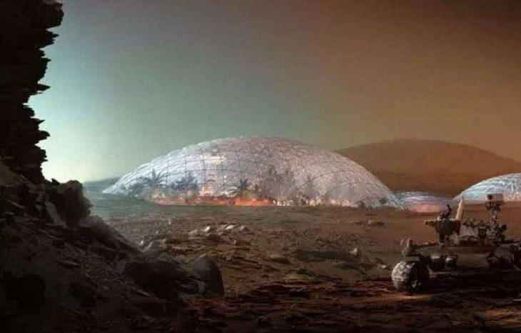 Космическая колонизация: смарт-технологии для предотвращения экологической катастрофы