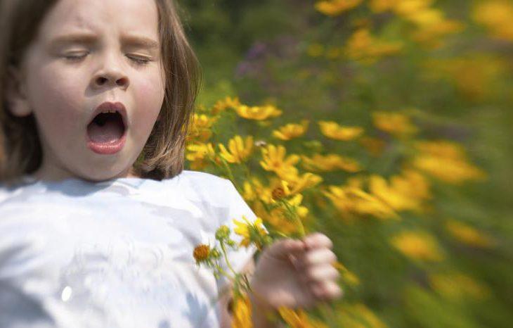 Изменения климата увеличит количество людей, подверженных аллергии