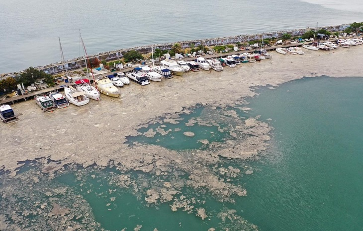 """Sea of Marmara is covered with """"slime"""" along the coast of Turkey: the Black Sea is under threat"""