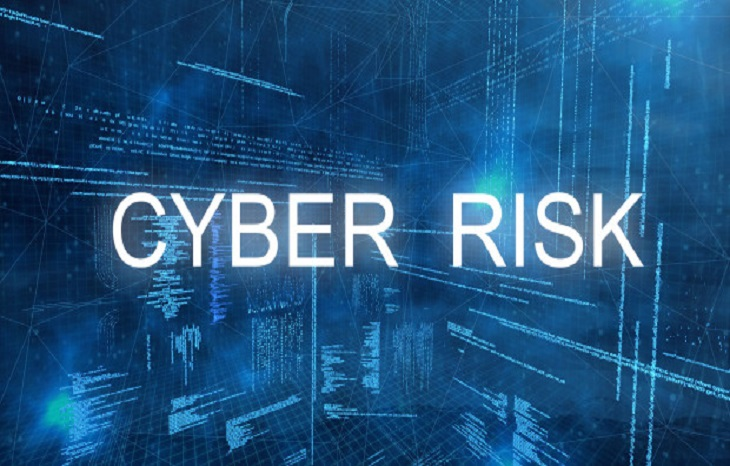 Cyber risk and risk management