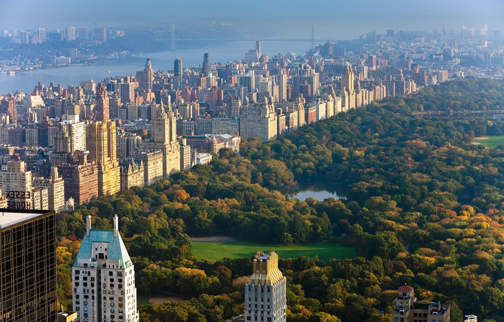 We've been mayors of New York, Paris and Rio. We know climate action starts with cities