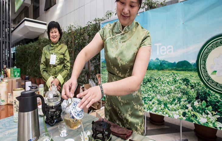 Чайной отрасли угрожает изменение климата