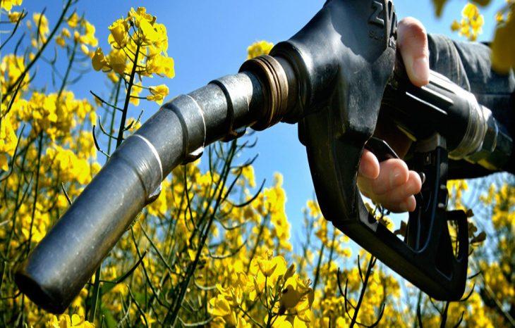 Биотопливо сделает полеты на 70% более экологичными
