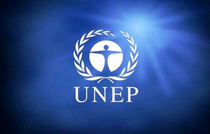 В ЮНЕП подбили итоги за 2018 год