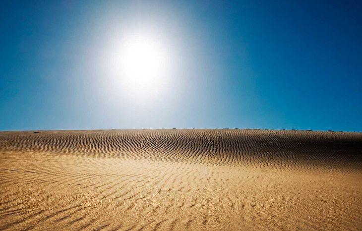 Африка может обеспечить мир на 70% солнечной энергией