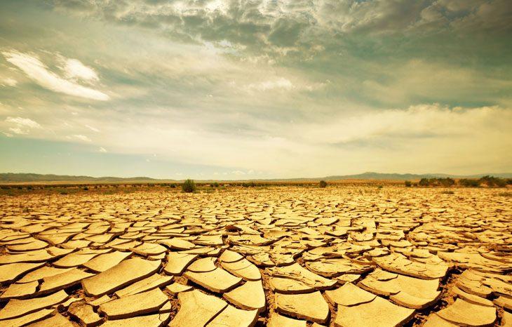 Глобальное потепление станет причиной не контролированного распространения засух