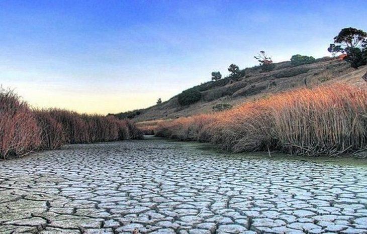 В ООН рассказали, сколько будет стоить остановить изменение климата