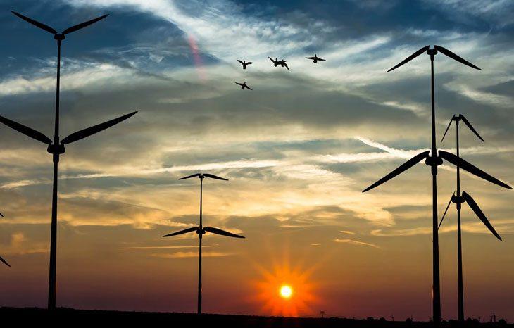 В Дании отчитались об рекордном объеме ветровой электроэнергии
