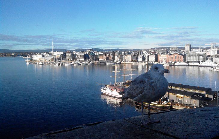 В Скандинавии самый чистый воздух в мире